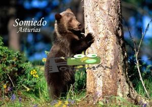 Somiedo Asturias