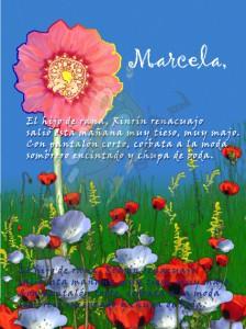 Postal Marcela